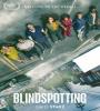 Blindspotting FZtvseries