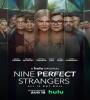 Nine Perfect Strangers FZtvseries