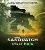 Sasquatch FZtvseries