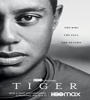 Tiger FZtvseries