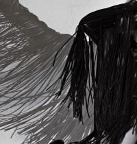 TuneWAP Shakira Winged